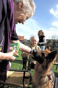 Stichting ZorgDier: Jigger op ouderenbezoek