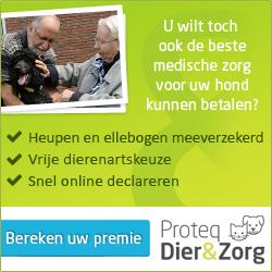 Proteq Dier en Zorg honden