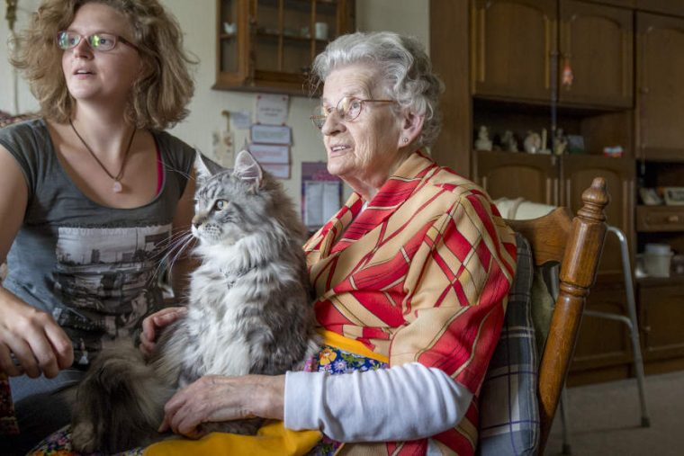 ZorgDier - ouderen langer thuis